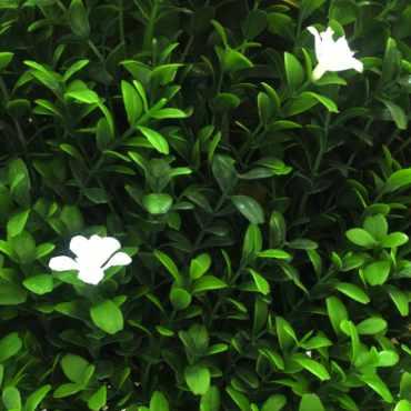 flor de azahar sintética