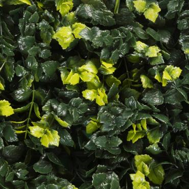 muro verde menta