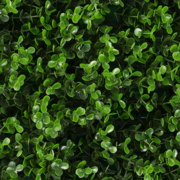 muro verde arrayán verde